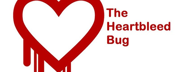 The Heartbleed Bug: What It Means for You