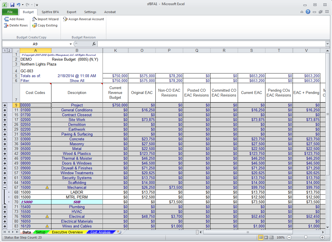Budget/Forecast/Analysis - Spitfire Project Management System