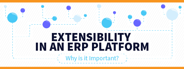 Extensibility in an ERP Platform: Why is it Important?