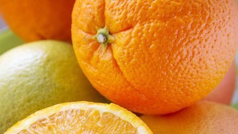 IMG Enterprises: Successful Acumatica ERP Implementation