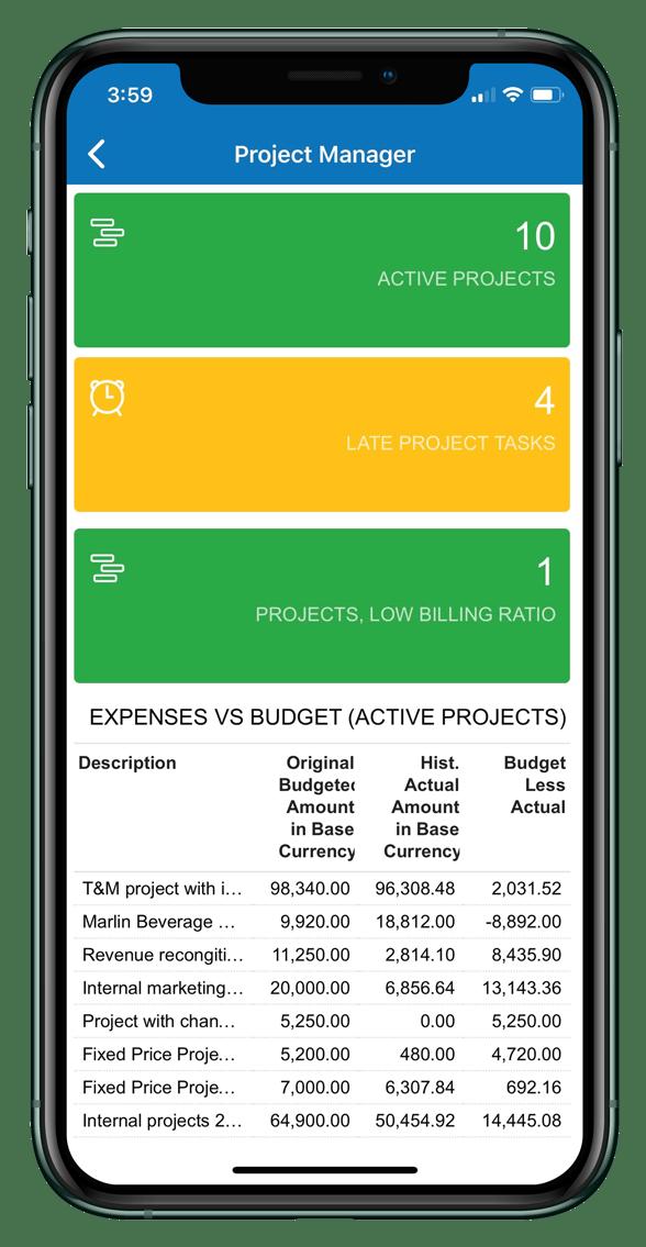 ERP Mobile Screen Shot
