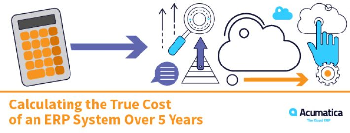Calculating the True Cost of an ERP System Over 5 years