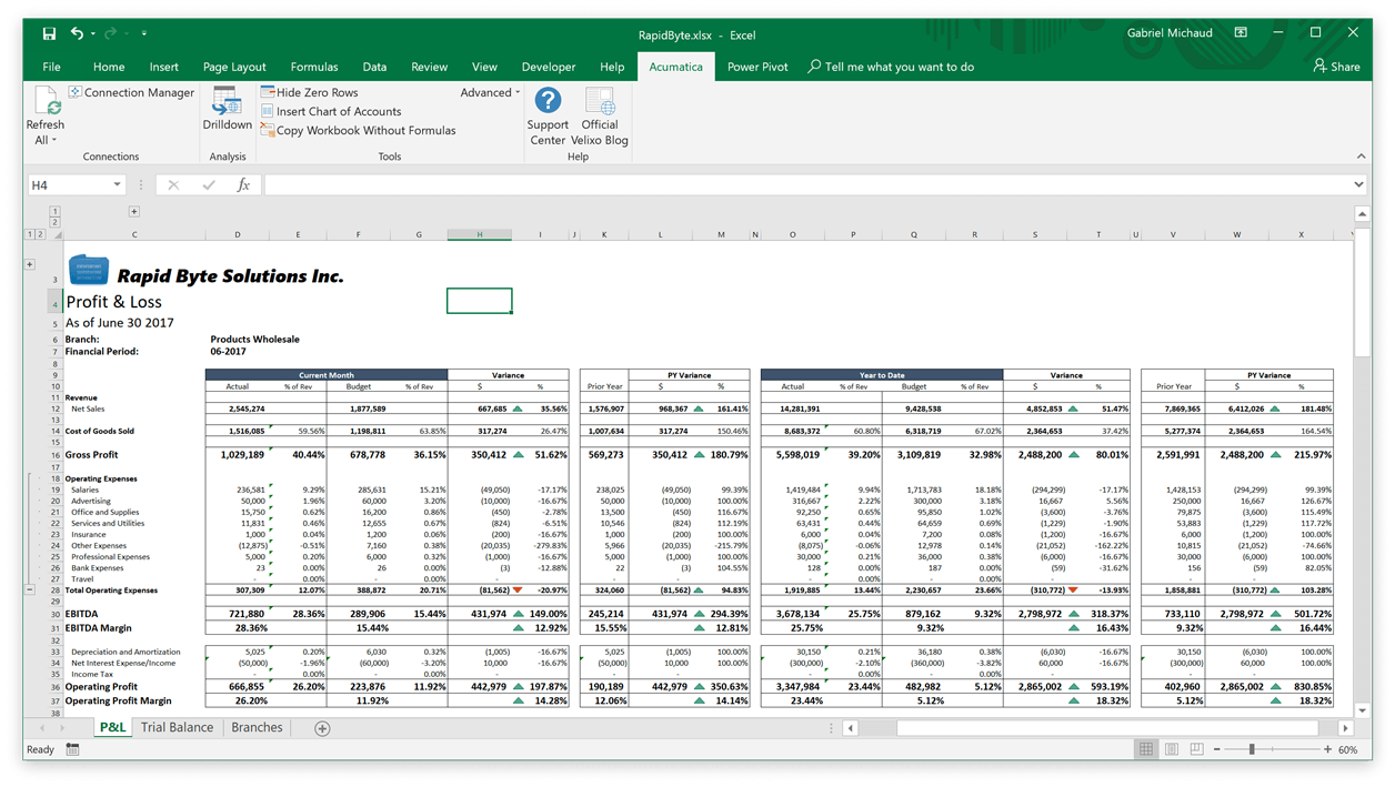 A sample Excel report that includes live data from Acumatica