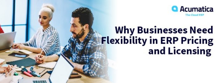 Why Businesses Need Flexibility in ERP Pricing and Licensing