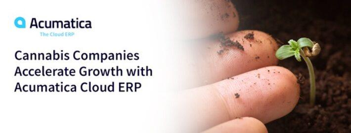 Cannabis Companies Accelerate Growth with Acumatica Cloud ERP
